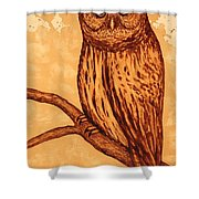 Barred Owl Coffee Painting Shower Curtain