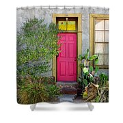 Barrio Door Pink And Gray Shower Curtain