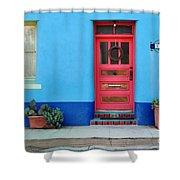 Barrio Door Pink Shower Curtain