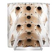 Basilica De La Sagrada Familia In Barcelona Shower Curtain
