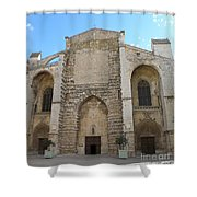 Basilica Of Saint Mary Madalene Shower Curtain by Lainie Wrightson