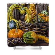 Basket Full Of Gourds Shower Curtain