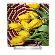 Basket Full Of Tulips Shower Curtain