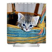 Basket Of Love Shower Curtain