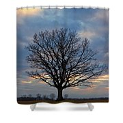 Basking In The Pink And Blue Sky Shower Curtain