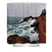 Bass Harbor Head Lighthouse Shower Curtain