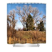 Bass Pond Trees 2012 Shower Curtain