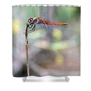 Battling Against The Elements Of Nature Shower Curtain