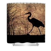 Bayou Walk Shower Curtain