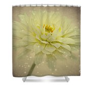 Be A Star Shower Curtain