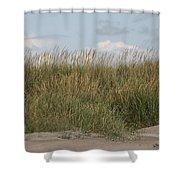 Beach Bluff Shower Curtain