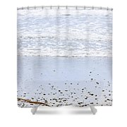 Beach Detail On Pacific Ocean Coast Shower Curtain
