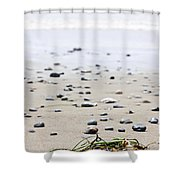Beach Detail On Pacific Ocean Coast Of Canada Shower Curtain by Elena Elisseeva