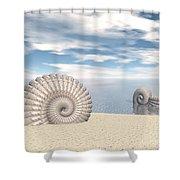 Beach Of Shells Shower Curtain