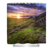 Beacon Hill Sunrise 11.0 Shower Curtain