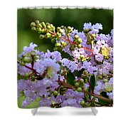 Beaded Lavender Lace Shower Curtain