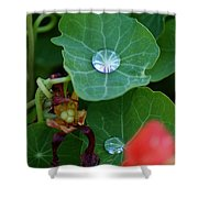 Beads Of Life Shower Curtain
