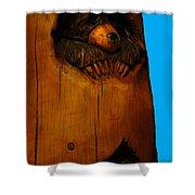 Bear In Log Shower Curtain