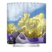 Bearded Iris Flowers Art Prints Floral Irises Shower Curtain