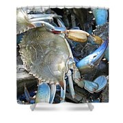Beaufort Blue Crabs Shower Curtain