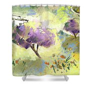 Beautiful Andalusia 04 Shower Curtain