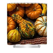 Beautiful Autumn Shower Curtain by Garry Gay