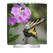 Beautiful Butterfly Shower Curtain