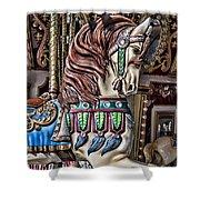 Beautiful Carousel Horse Shower Curtain