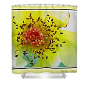 Beautifully Withered Shower Curtain
