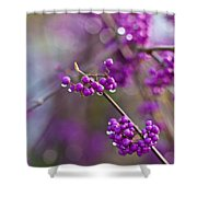 Beauty Berry Explosion Shower Curtain