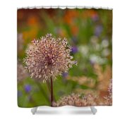 Beauty Clusters Shower Curtain