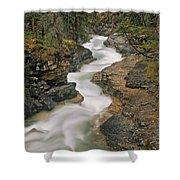 Beauty Creek, Banff National Park Shower Curtain
