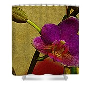 Beauty In Bloom Shower Curtain
