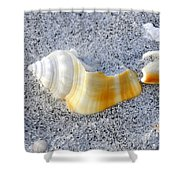 Beauty In Sand Shower Curtain