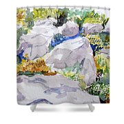Beauty In The Rocks Shower Curtain