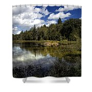 Beaver Lodge Shower Curtain