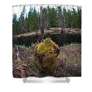 Beaver Marks Shower Curtain