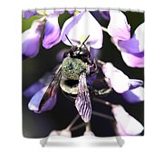 Bee And Blooms - Card Shower Curtain