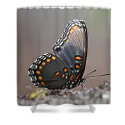 Bee And Me Shower Curtain