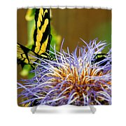 Bee And The Butterfly Shower Curtain