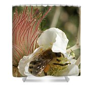 Bee Break Shower Curtain