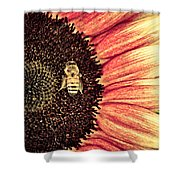 Bee Dazzled Shower Curtain