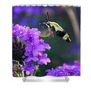 Bee Fur-eal Shower Curtain