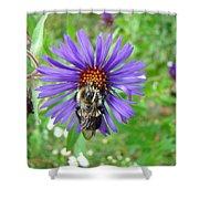 Bee Hug Shower Curtain