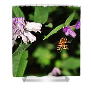 Bee In Flight Shower Curtain by Kaye Menner