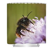 Bee In Pollen Shower Curtain