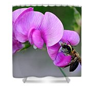 Bee In The Pink - Greeting Card Shower Curtain
