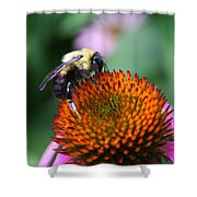 Bee-ing Happy Shower Curtain