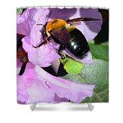 Bee On Azalea Bloom Shower Curtain by Lisa Phillips