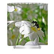Bee On Primrose Shower Curtain